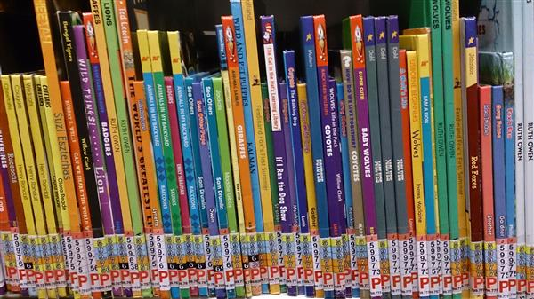 Childrens' books on a library shelf
