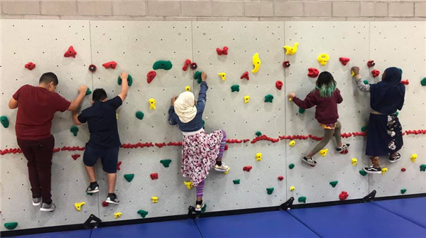 students climbing rock wall in the gym